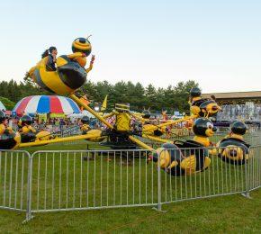 Flyin Bee